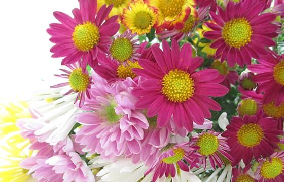 ご自宅に花束のお届け